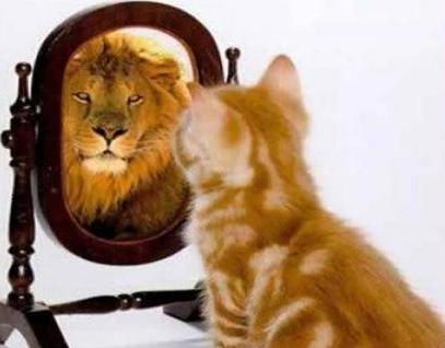 самооценка себя